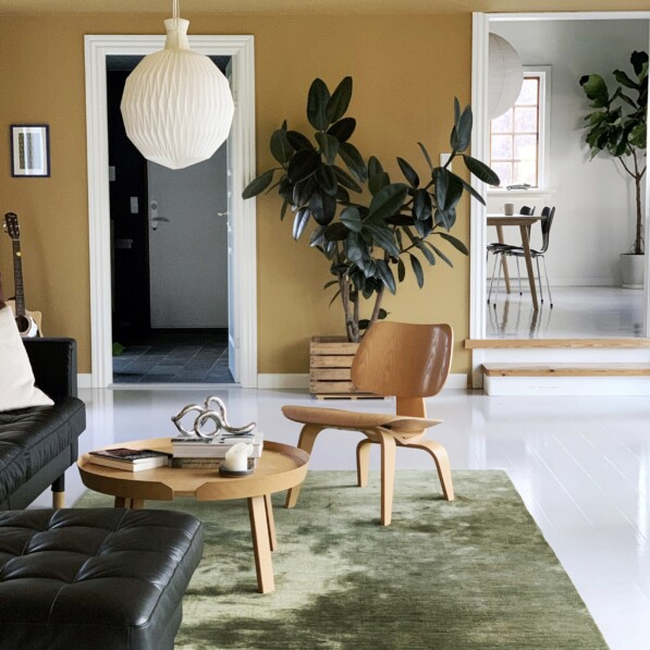 At home with Alek Modin